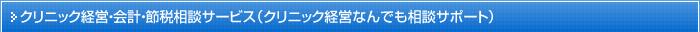 クリニック経営・会計・節税相談サービス(クリニック経営なんでも相談サポート)